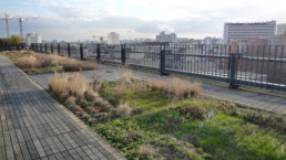 Green space in Paris, infrastructure designed for climate change.