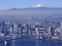 Aerial view of Tokyo.