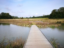Canal in Albertslund Municipality