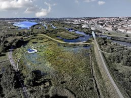 Aerial view of a wetland in the district of Vorup in Randers Municipality. It helps protect the city from water from above, below and from the sea.