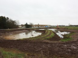 A constructed wetland in the Tønder Municipality will help solve rainwater problems