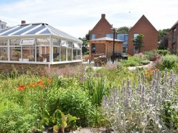 In Middelfart, a nursing home parking lot has been transformed into a thriving Climate Garden