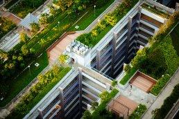 Beijing's rooftop garden for low carbon pilot communities